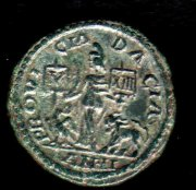 Легионные символы - орёл Legio V Macedonica и лев XIII Gemina легиона
